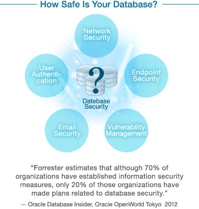 Oracle Database Vulnerability Assessment Service | Database